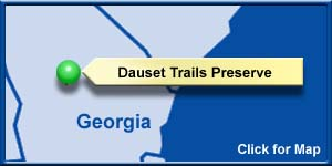 Dauset Trails- Details and Pictures on